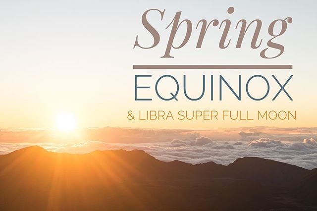 Spring Equinox 🌸 // Super Full Moon 🌕// New Potential 🌟 . . . Somethings that are not in alignment with your new potential are making themselves shown. 🌱 We invite you to focus on where you are headed... And those things showing up, getting all your attention? Let them go. 🍃🙏 Everything is blooming 💛🌞🌻 . . . Are you ready for Spring Cleaning? 🌸🌼 Pick up your energy cleansing essentials in store, like our Smudging Kit; complete with Abalone Shell, Sage and Palo Santo 🌫 . . . . . . @naturalhealingcentre #springequinox #spring #energy #vibration #frequency #librafullmoon #superfullmoon #lunarenergy #equinox #luna #donmills #shopsatdonmills #northyork #toronto #metaphysical #healing