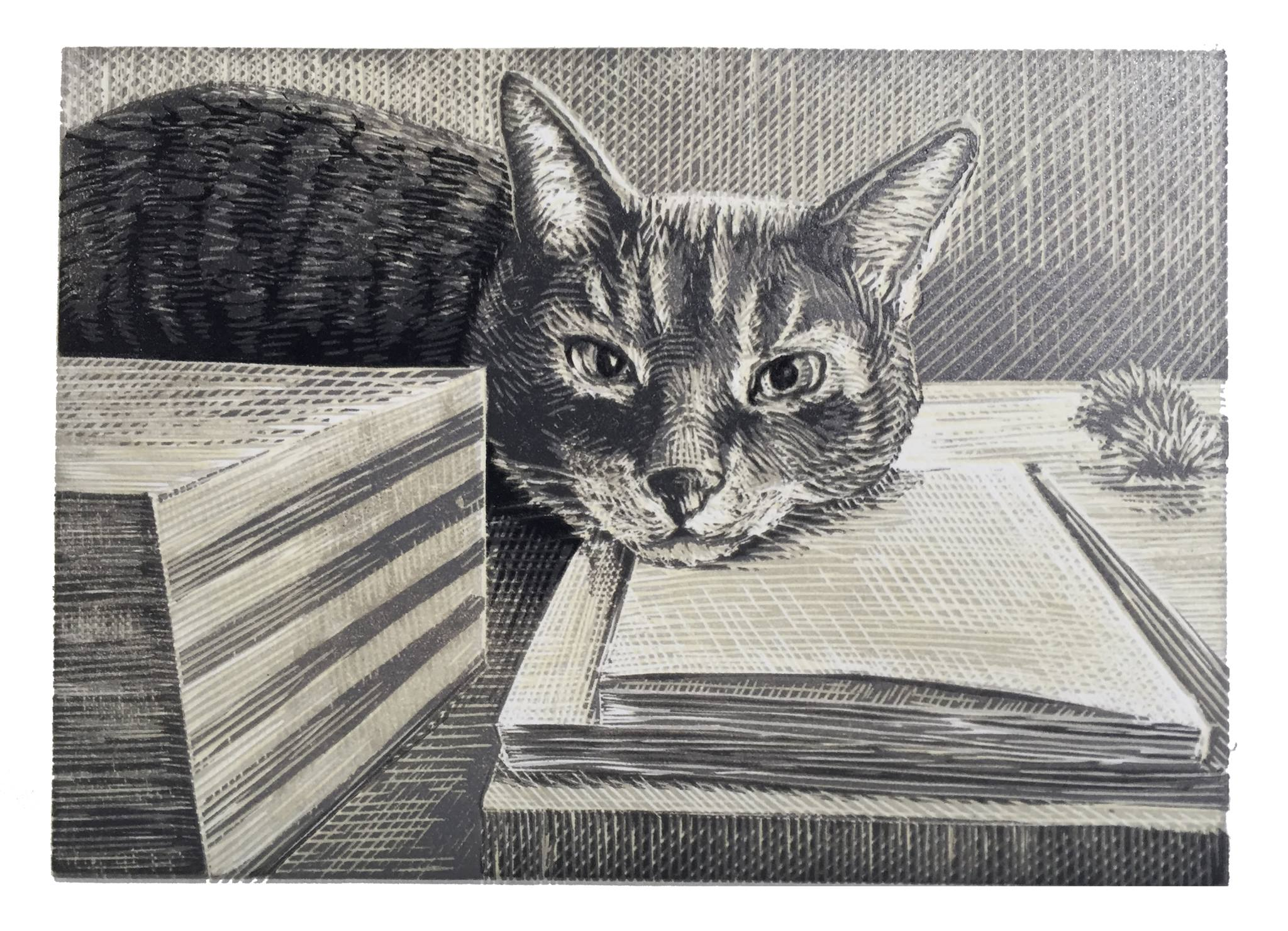 """Here it is, the reduction linocut of Sliver with the darkest color printed. It ended up being a very dark grey and not black, which is more like Sliver's actual color of fur.  It is a 5""""x7"""" block. The final edition is about 7 prints. I started with 10 and lost a few along the way, but that's what happens with multicolor prints."""