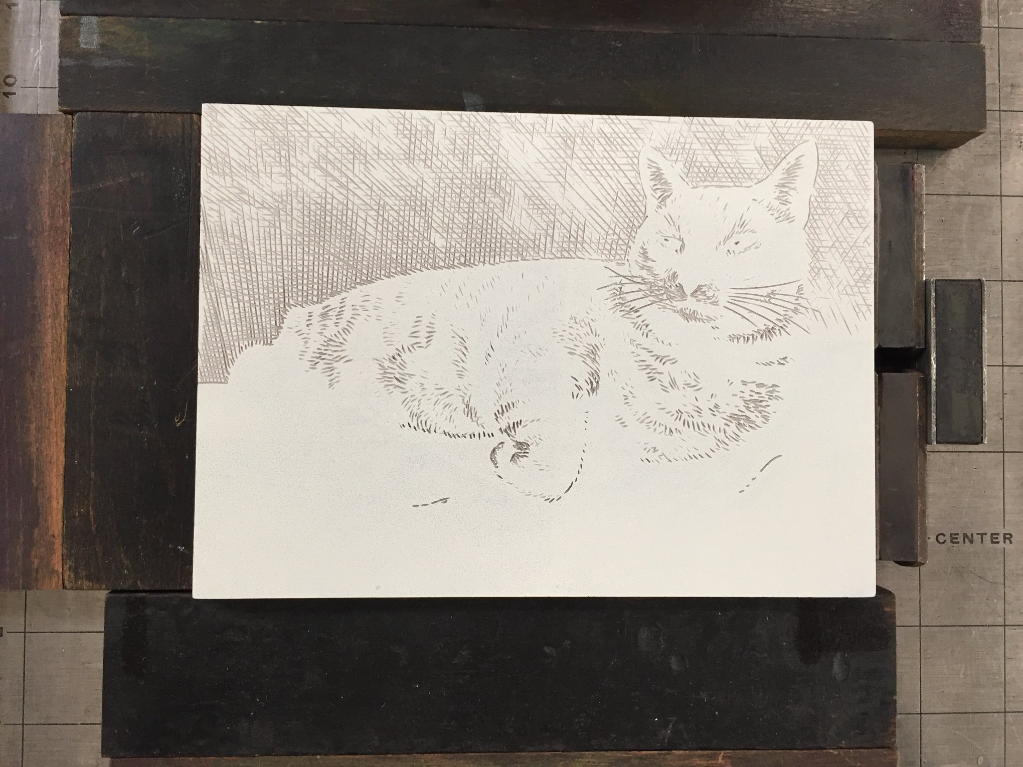 Here is the block carved, inked, and locked up in the press. It is ready for printing the second color. I have carved more of the wall behind Sliver and have expanded on the light areas in his fur. The ink color is slightly darker and more grey, but still very light.