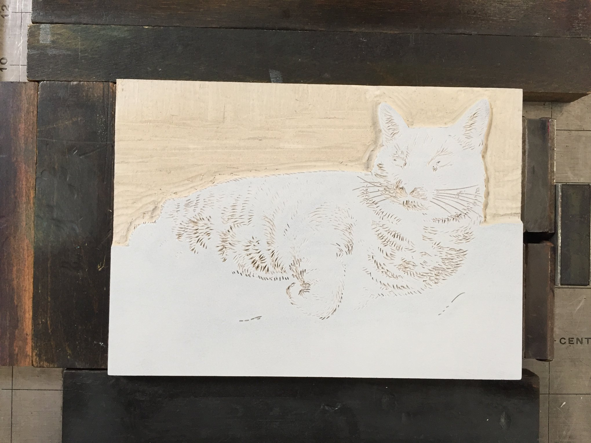 Here is the block carved, inked, and locked up in the press, ready for printing the third color. At this stage, I have carved away the background wall behind Sliver. I have expanded the light parts of the fur. The ink has a slightly darker value of grey mixed into it.