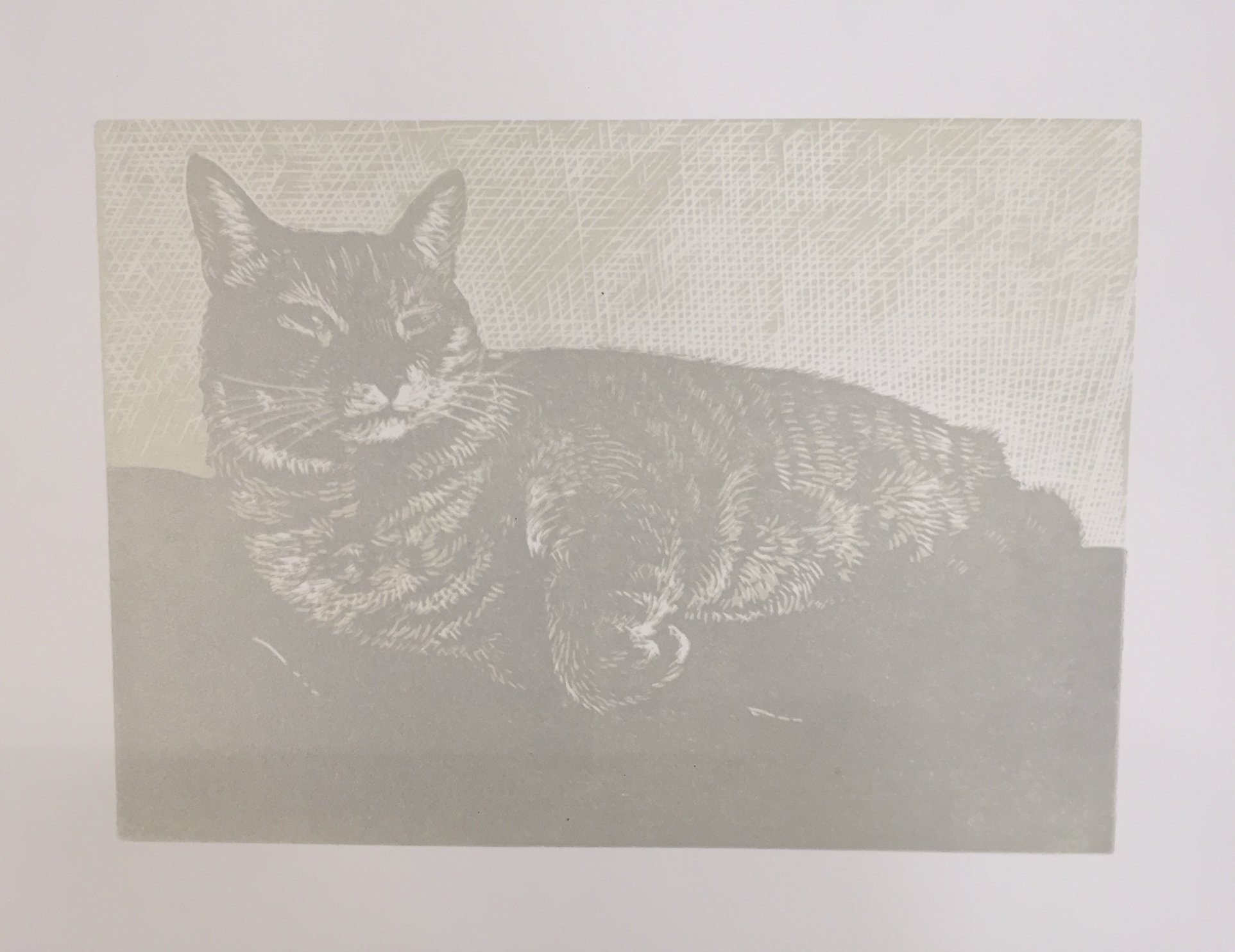 Here is the third color printed on top of the first two colors on the paper. There is a value and color difference between the cat and the wall behind. The highlights on the fur have started to emerge. The details that I had planned on in the drawing are starting to become visible.