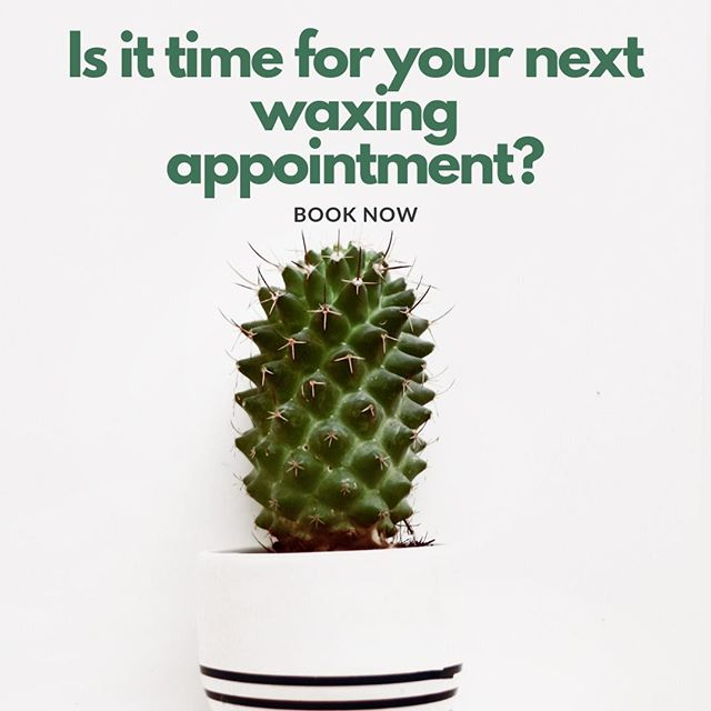 Give us a call to book your next waxing appointment!  Find our available waxing services here -  https://www.hillcountryvitality.com/waxing
