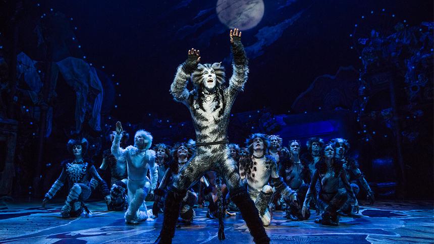 Andy Huntington Jones as Munkustrap in Broadway's revival of Cats.