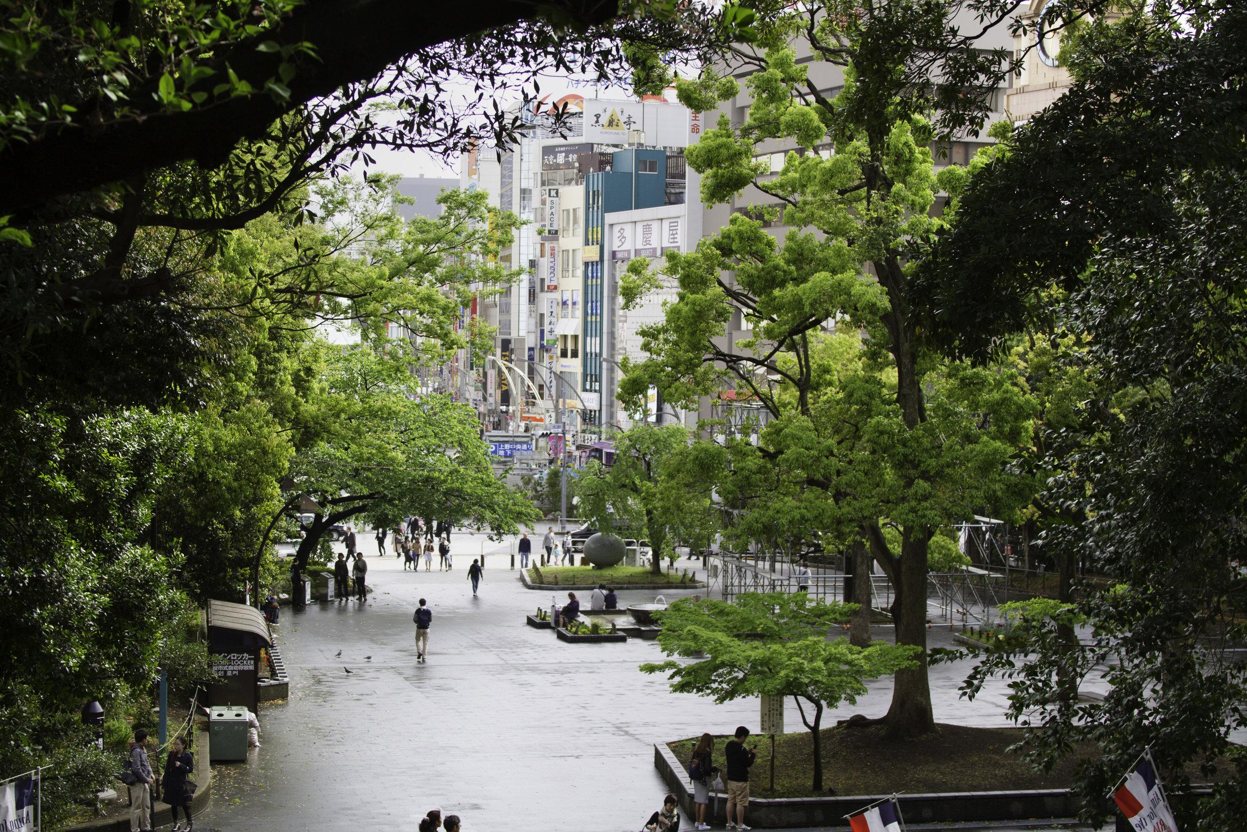 Ueno Park Entrance.jpg