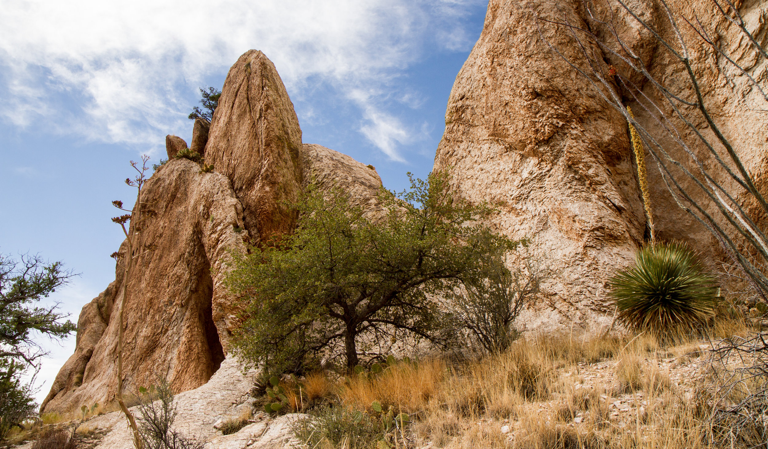 Organ Needles Rock Outcrop1.jpg