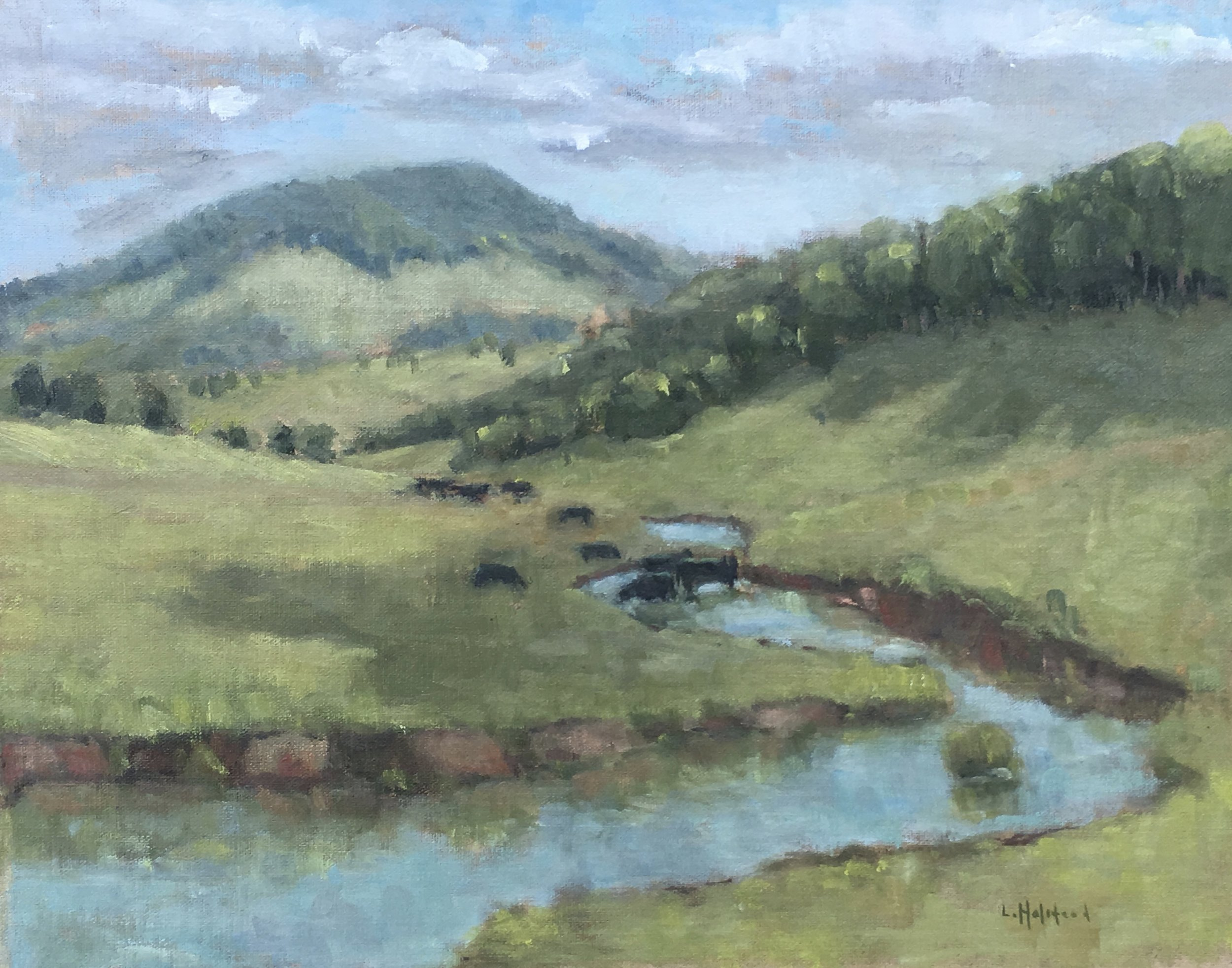 Potomac Headwaters, Oil on Linen, 11 x 14, sold
