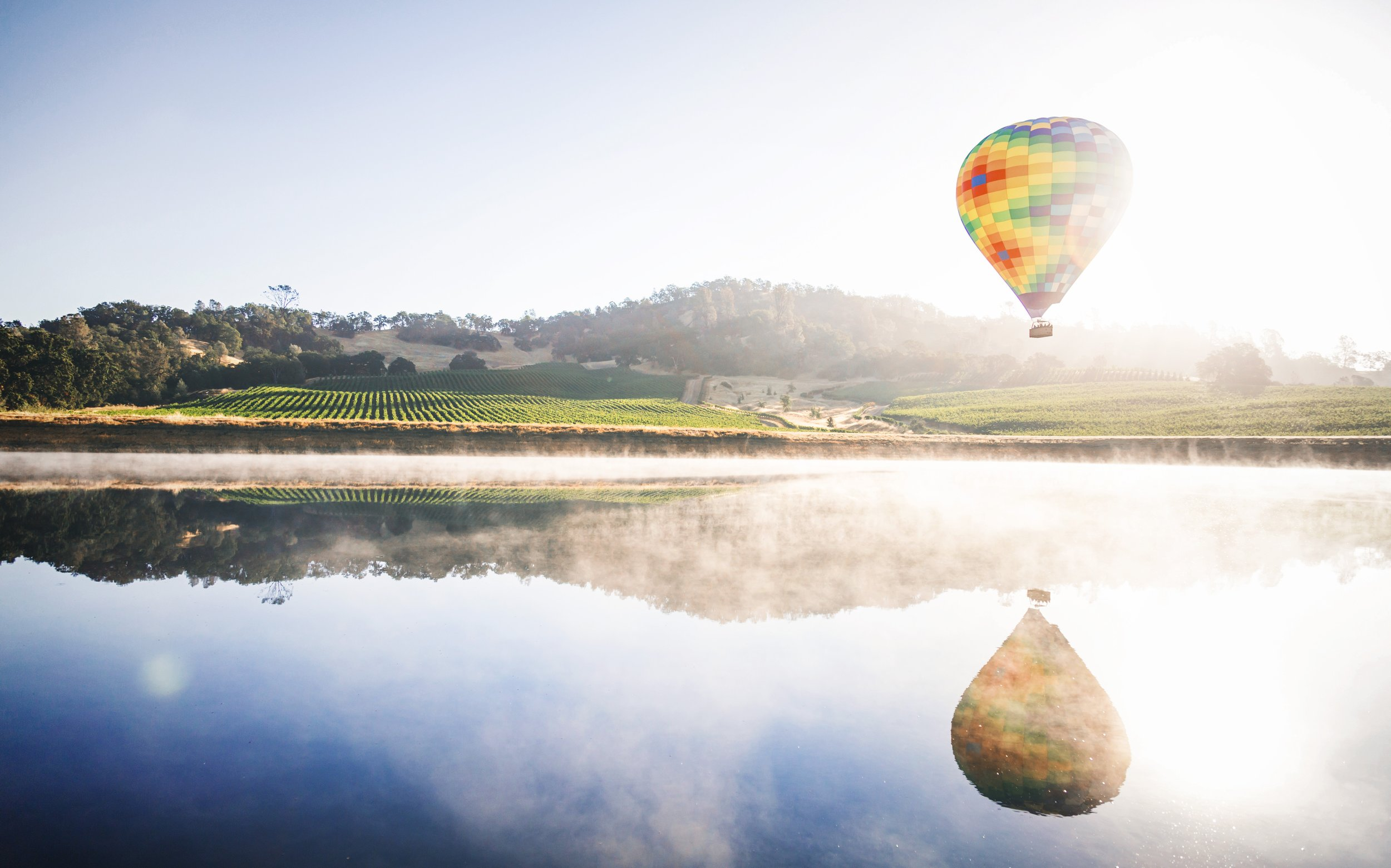 Experience Napa Valley in a Day