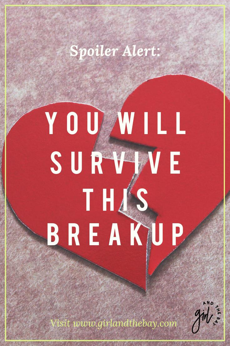 Survivingabreakup_.png