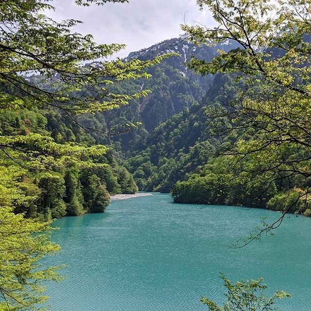 🚂🇯🇵🗾Flashback to a few months ago ...in Japan on a scenic rail train seeing this gorgeous flowing river and mountains alongside me. . . 💧🏞️The colour of the water blew me away! Spring is here so it's exciting to see dormant things in nature slowly bursting into life as the weather warms up. 🌱☀️ . . Are you a fan of spring? Or do you suffer from hayfever like me?! 🤧 . . 📝🏆Don't forget to fill out my spring 1 min timetable survey. Those who complete the survey before Sep 13th will be entered into the draw to win a complimentary yoga or restorative yoga pass or handmade crochet gift to choose between. Link to survey in Bio. . . Enjoy the weekend everybody! 😊 - Wendy . . #nofilter #japan #travel #adventure #spring #river #mountains #nature #endeavourhills #survey #timetable #yoga