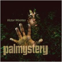 vw_palmystery_cdcvr3.jpg
