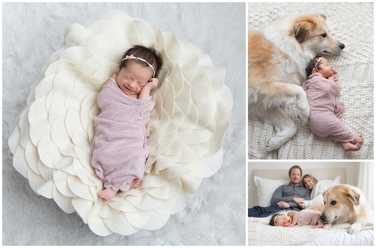 minneapolis_minnesota_newborn_family_lifestyle_portrait_session.jpg