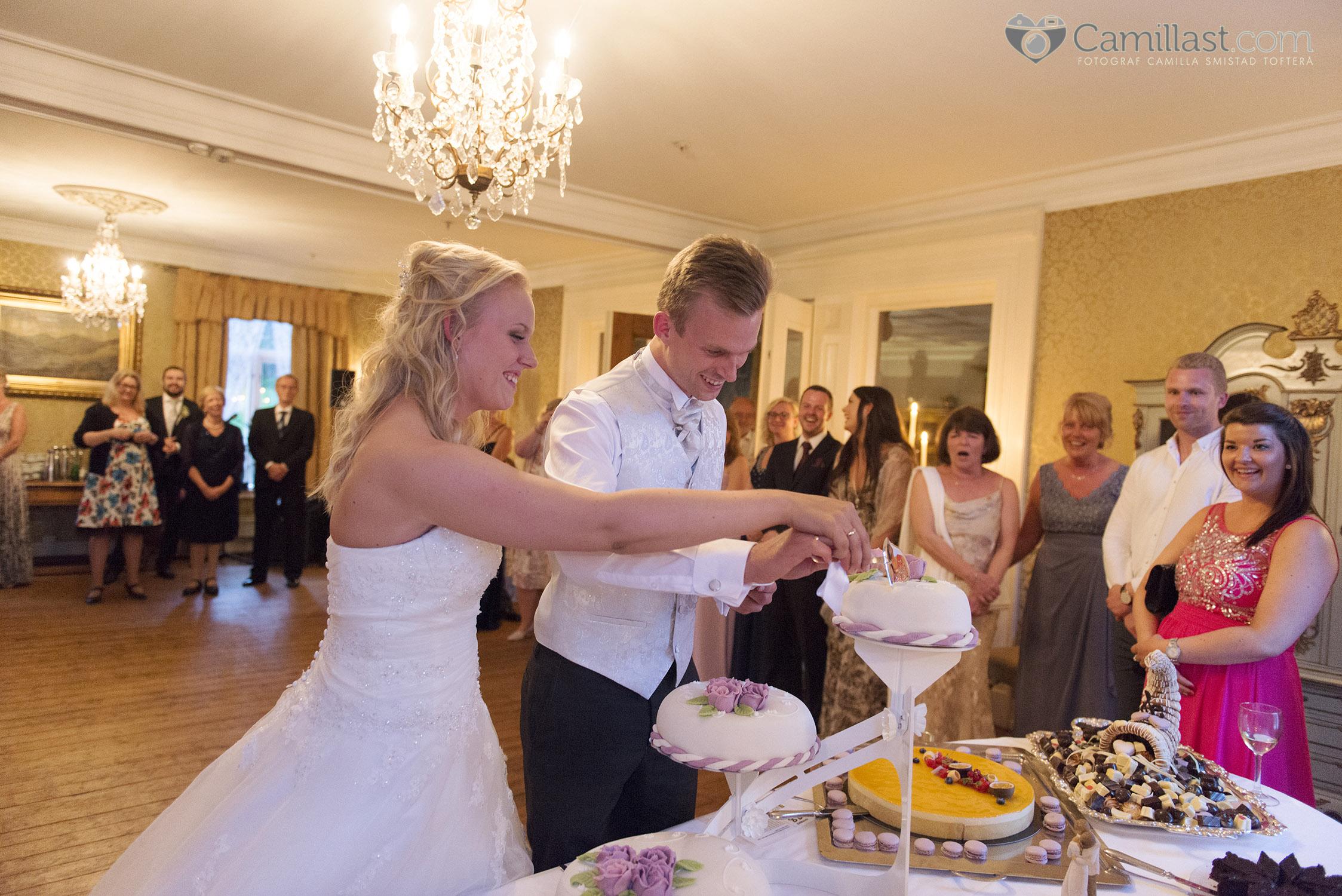 Bryllup Camilla Henrik 20150704Fotograf CamillaST482 copy.jpg