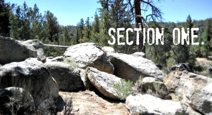 section_1dmod.jpg