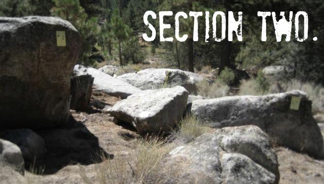 section_2bmod.jpg