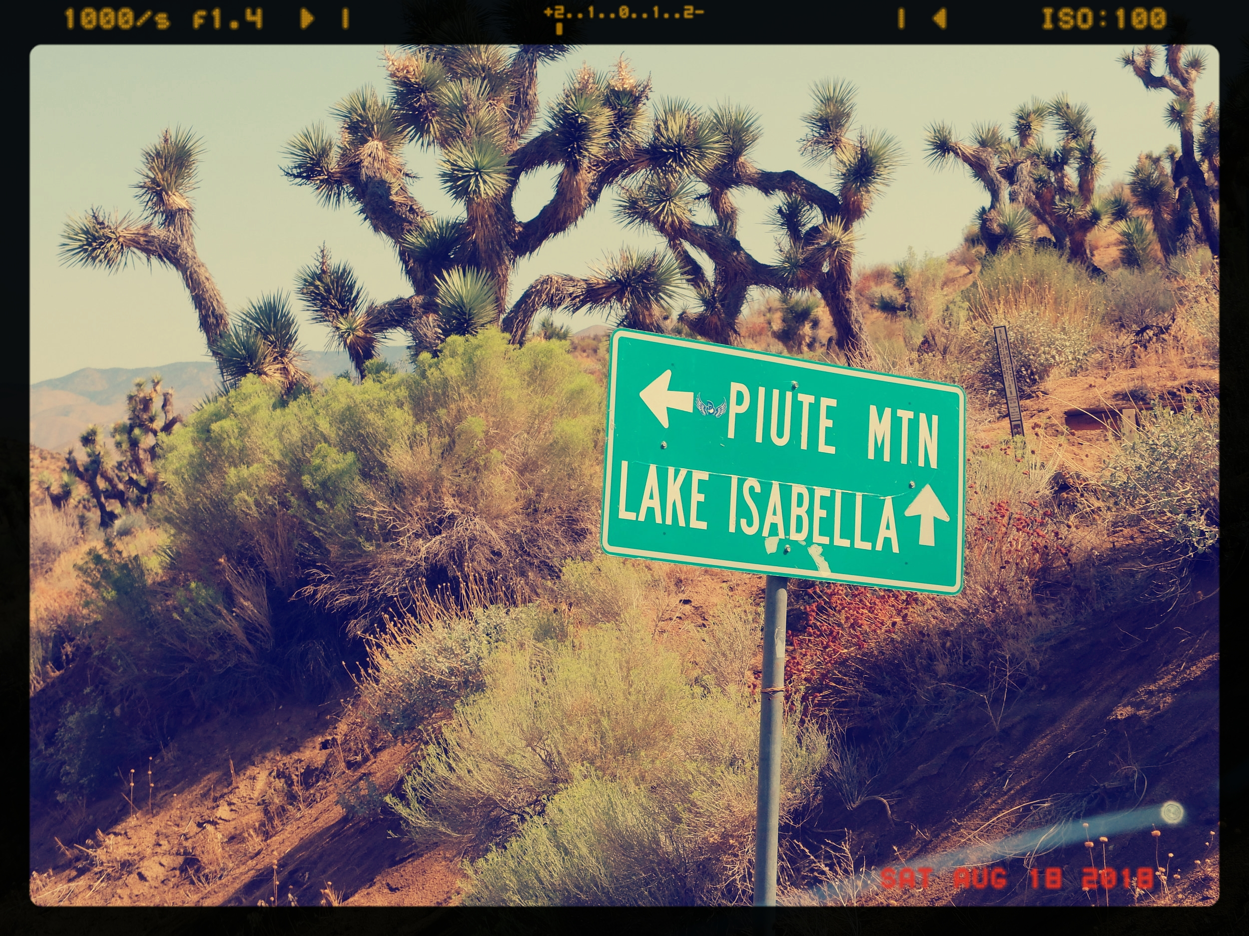 Look for the signs. From here, just 8 miles to go. Up.