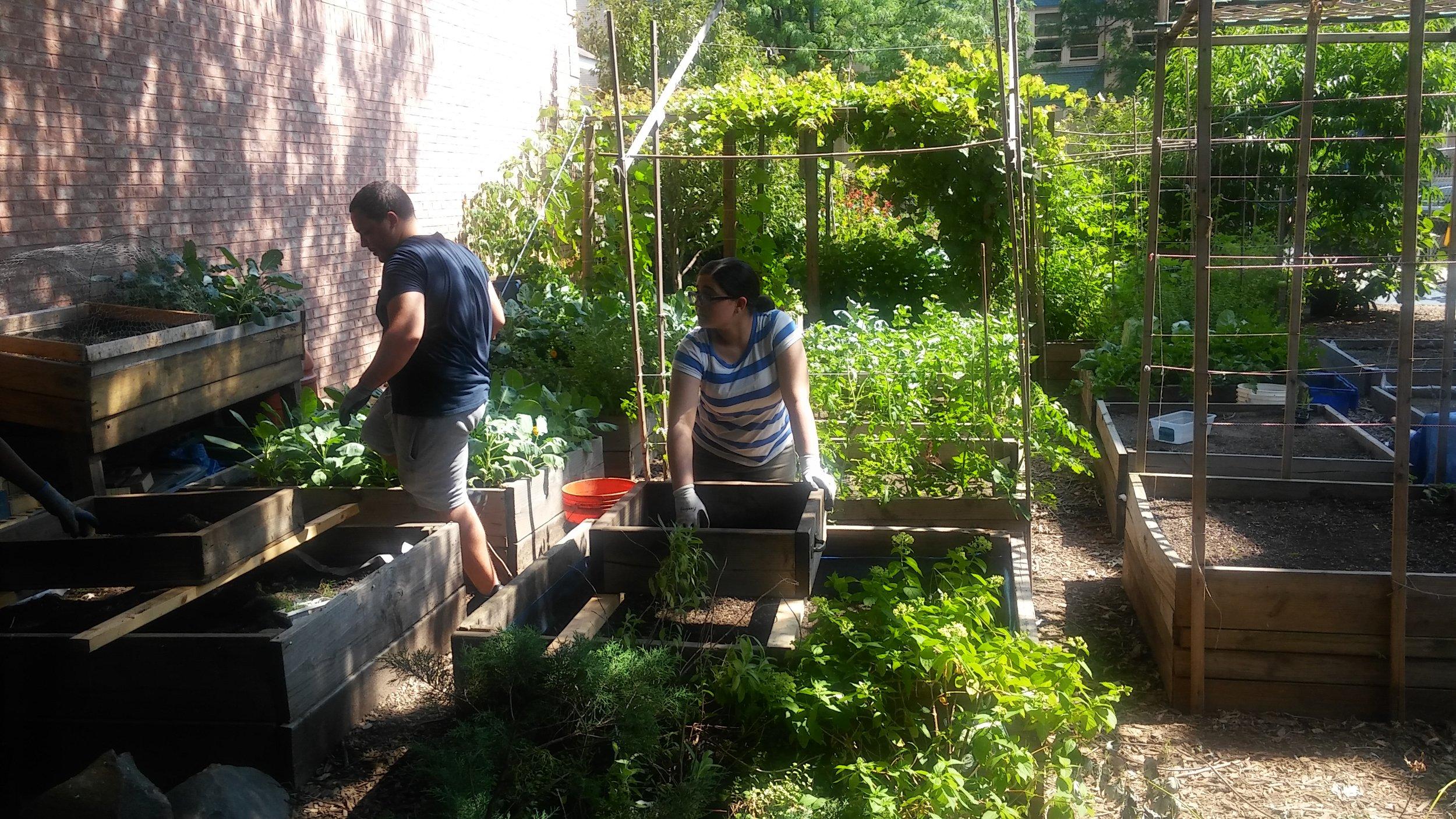 community garden trip.jpg