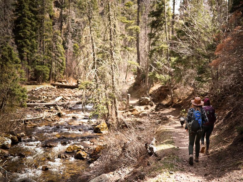 Santa Barbara trail in Carson National Forest near Penasco.