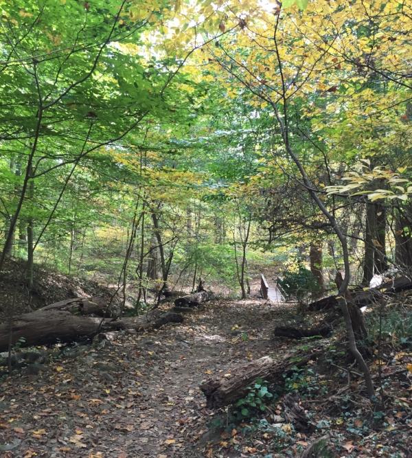 hiking the glover trail.JPG