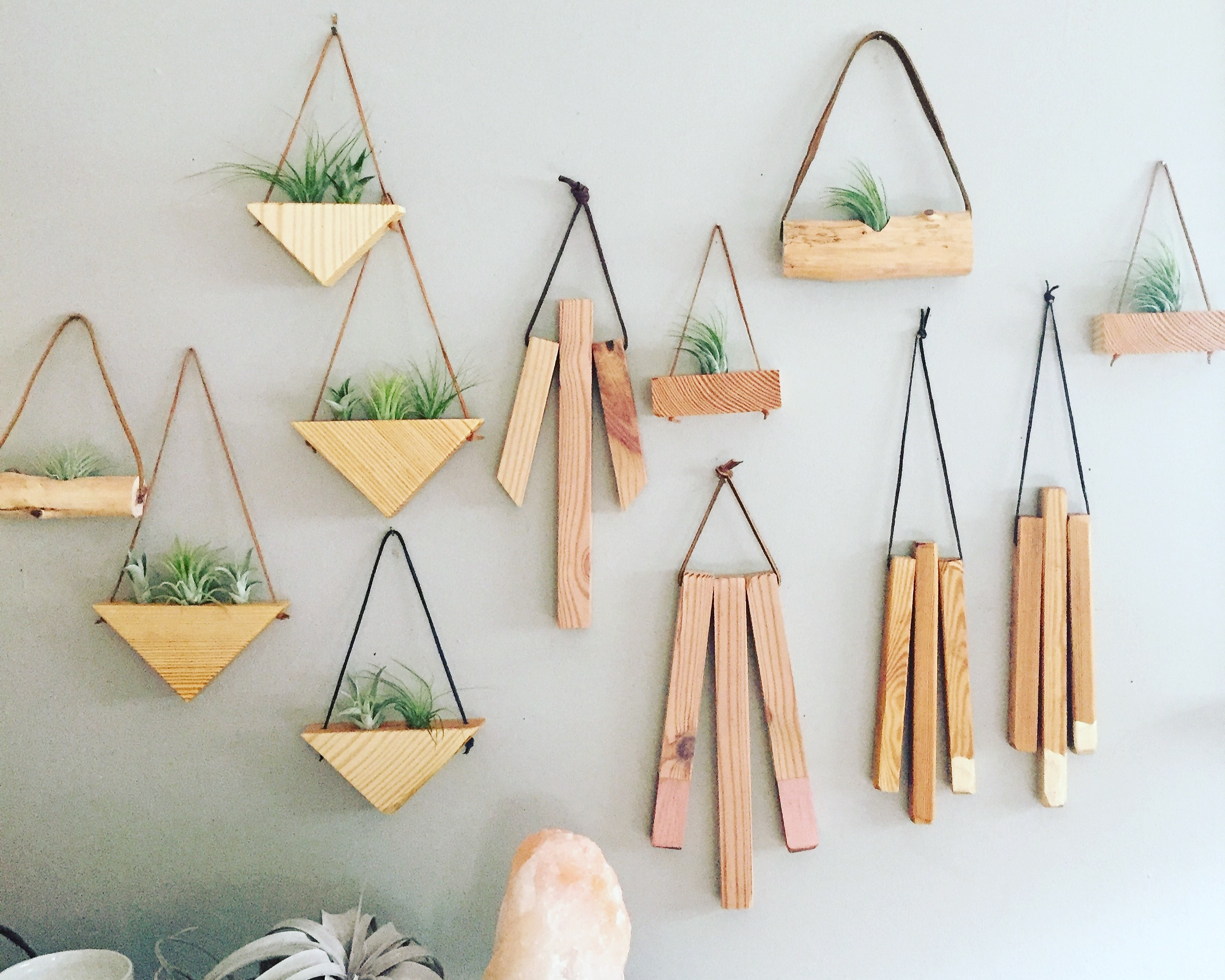 Natural wood decor and air plants