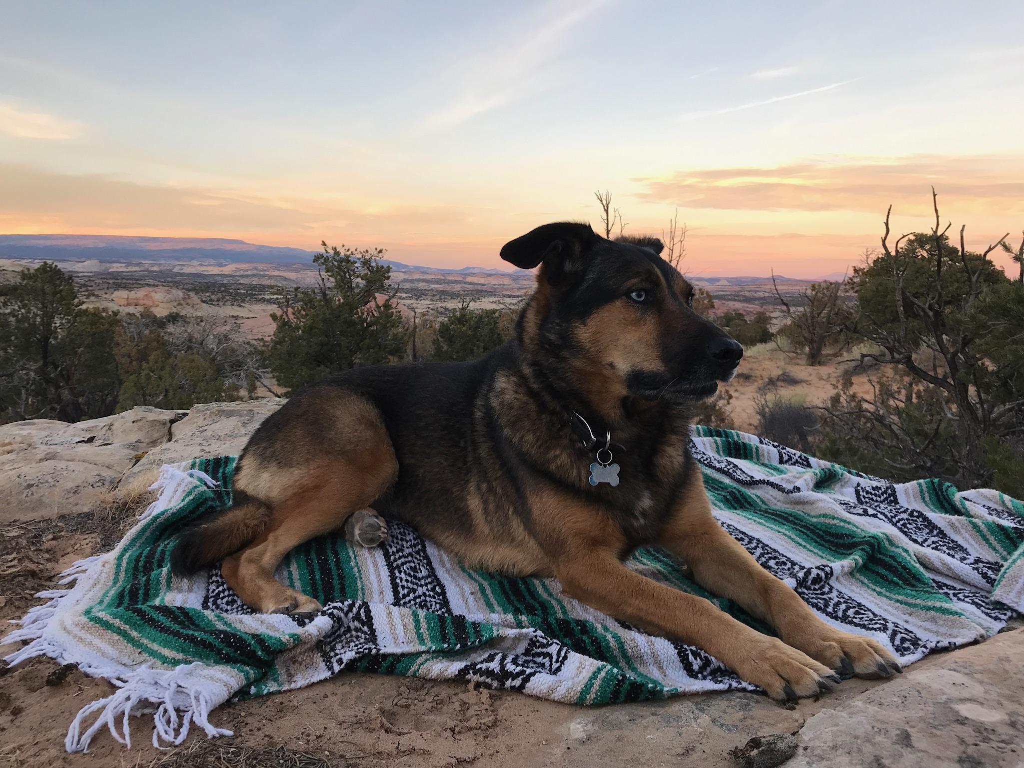 Osa in our sunset spot.