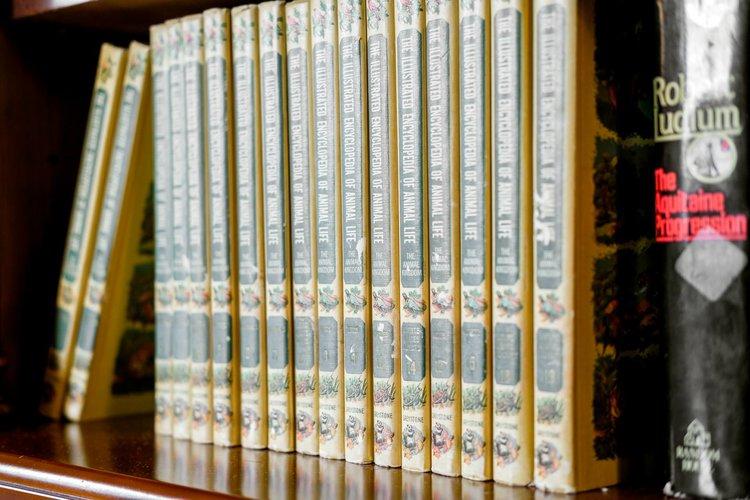 Books_60c7c225bda651d428b31a99990a5999.jpg