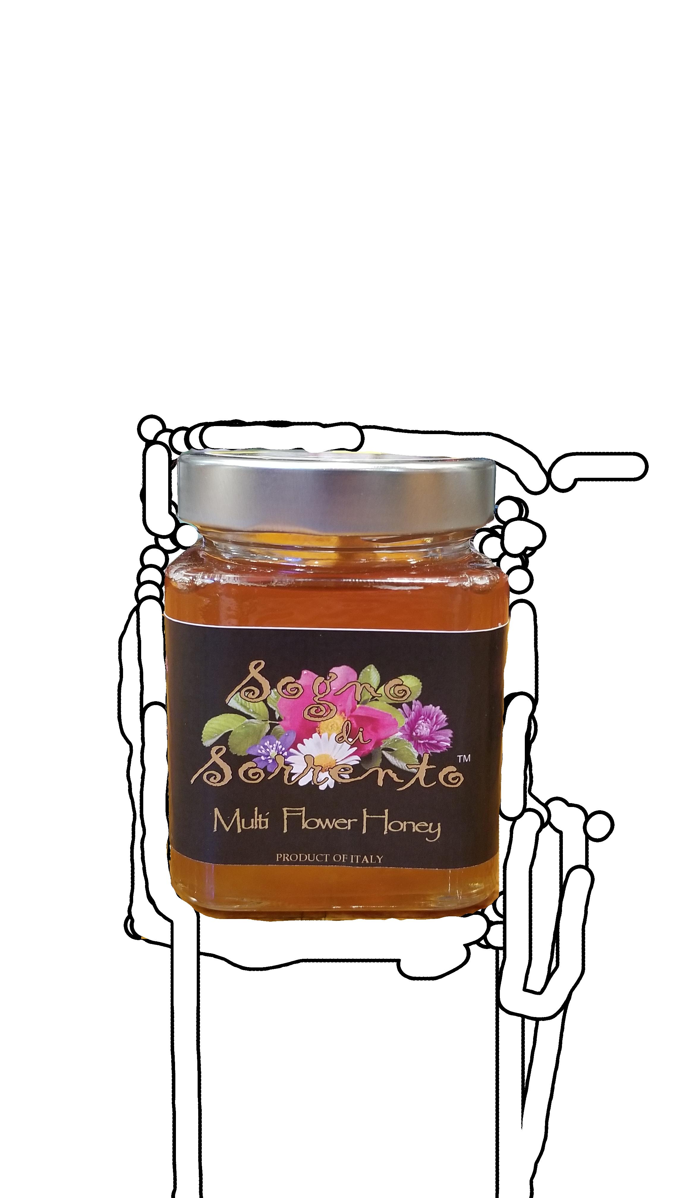 Sogno Multi Flower Honey.png