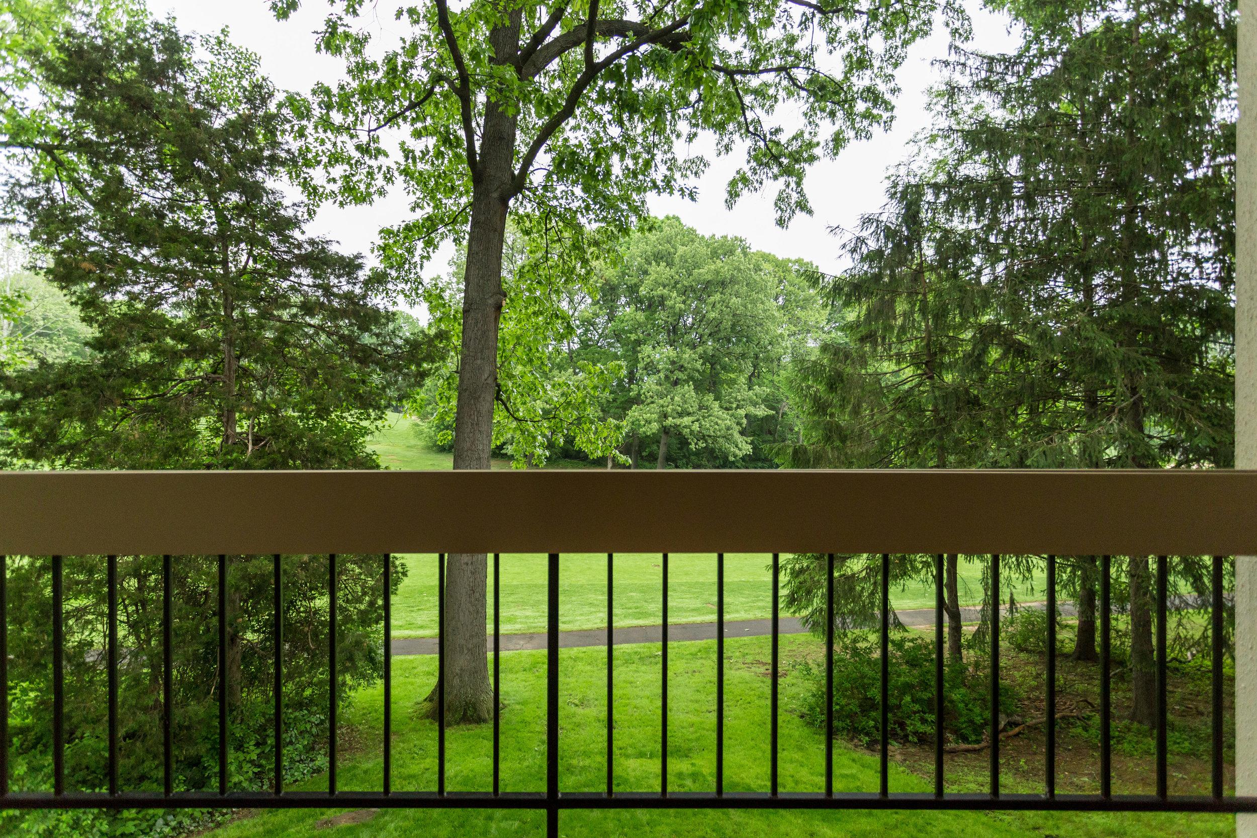 11718 Newbridge Ct Reston VA-print-079-66-Balcony-4200x2800-300dpi.jpg