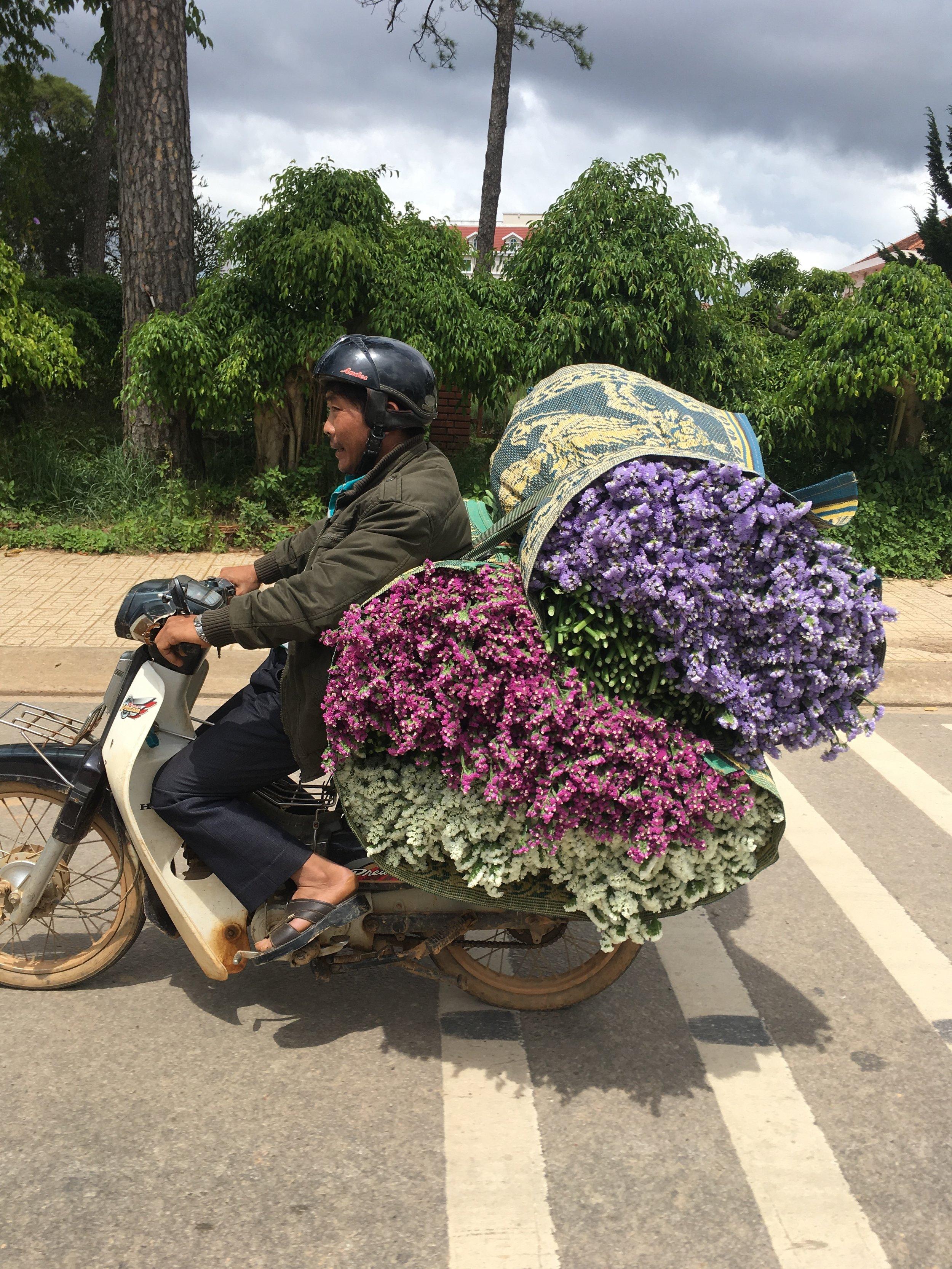 Llevar todas estas flores en una moto? Parece imposible.