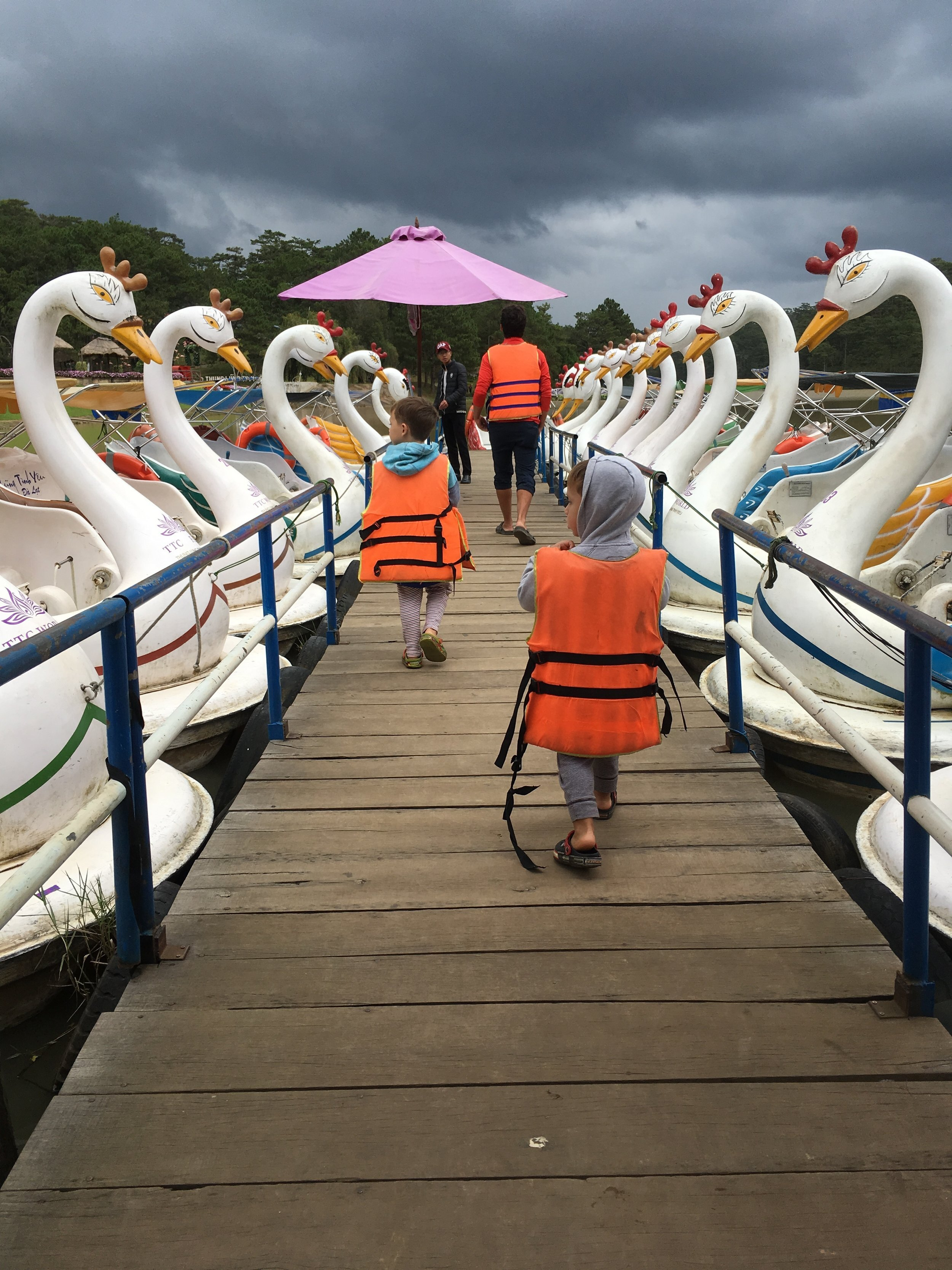 A bizarre and very fun pedal swan ride.
