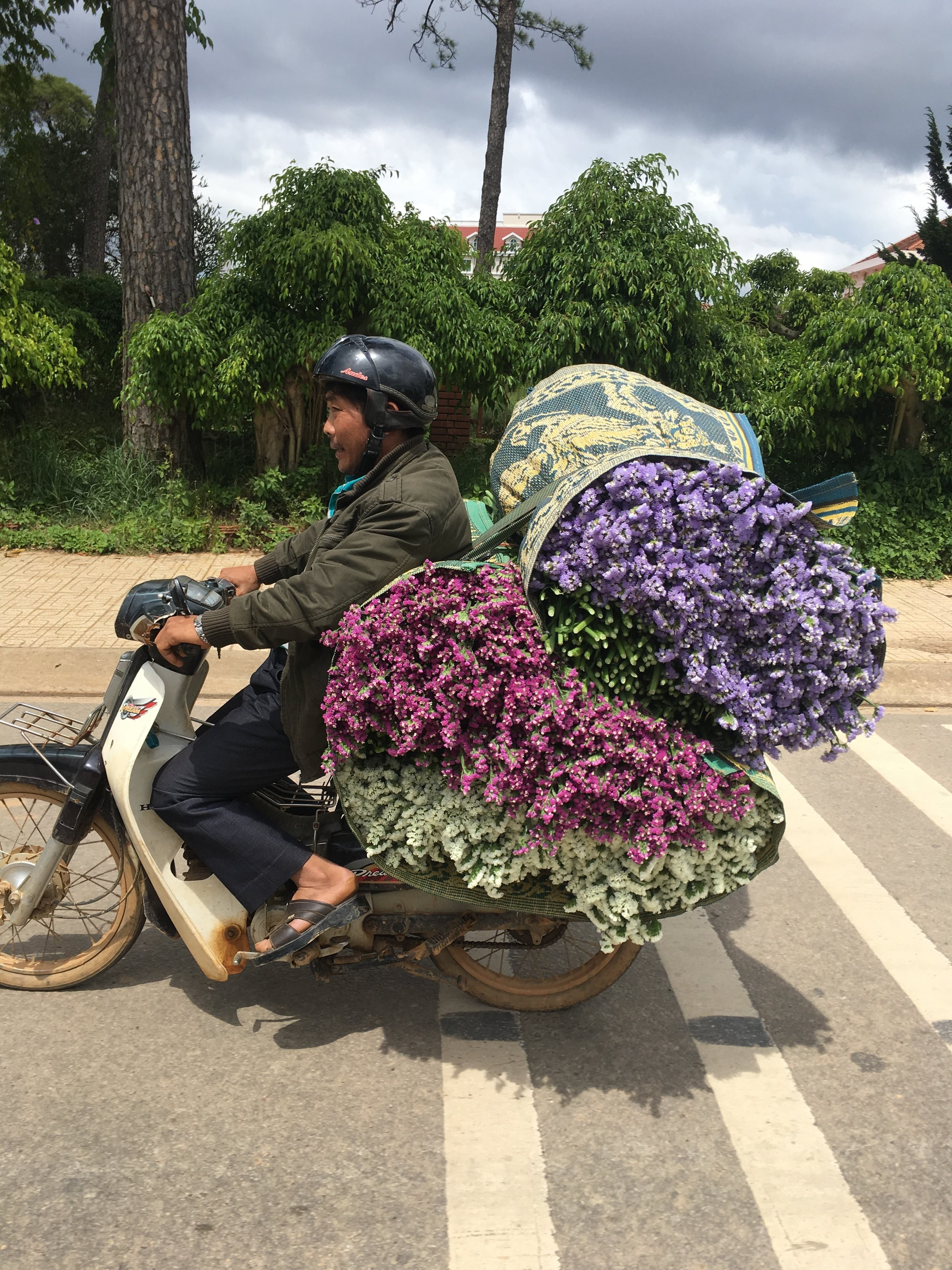 Carry all these flowers on a motorcycle? It seems impossible.