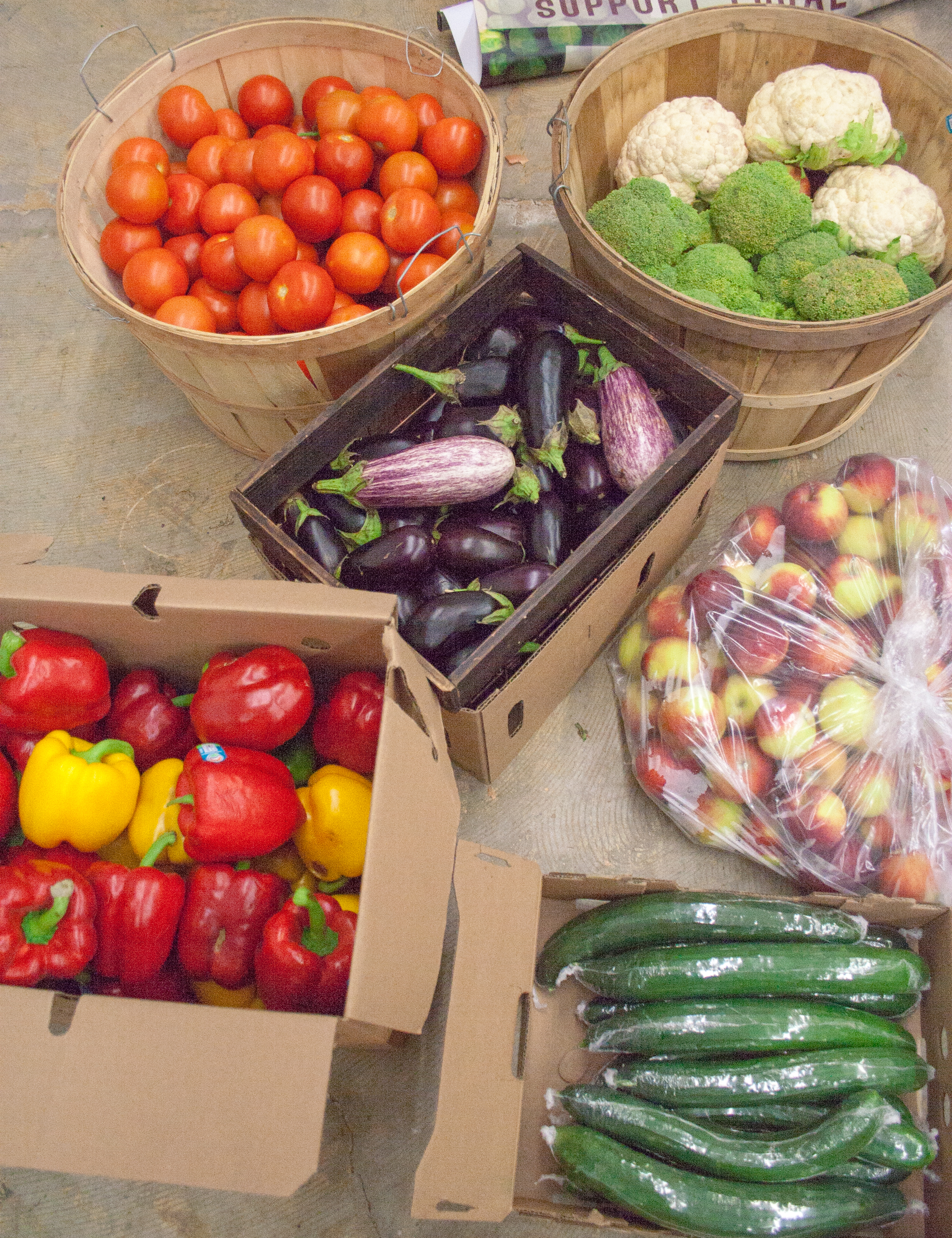 Food Fund-12.jpg