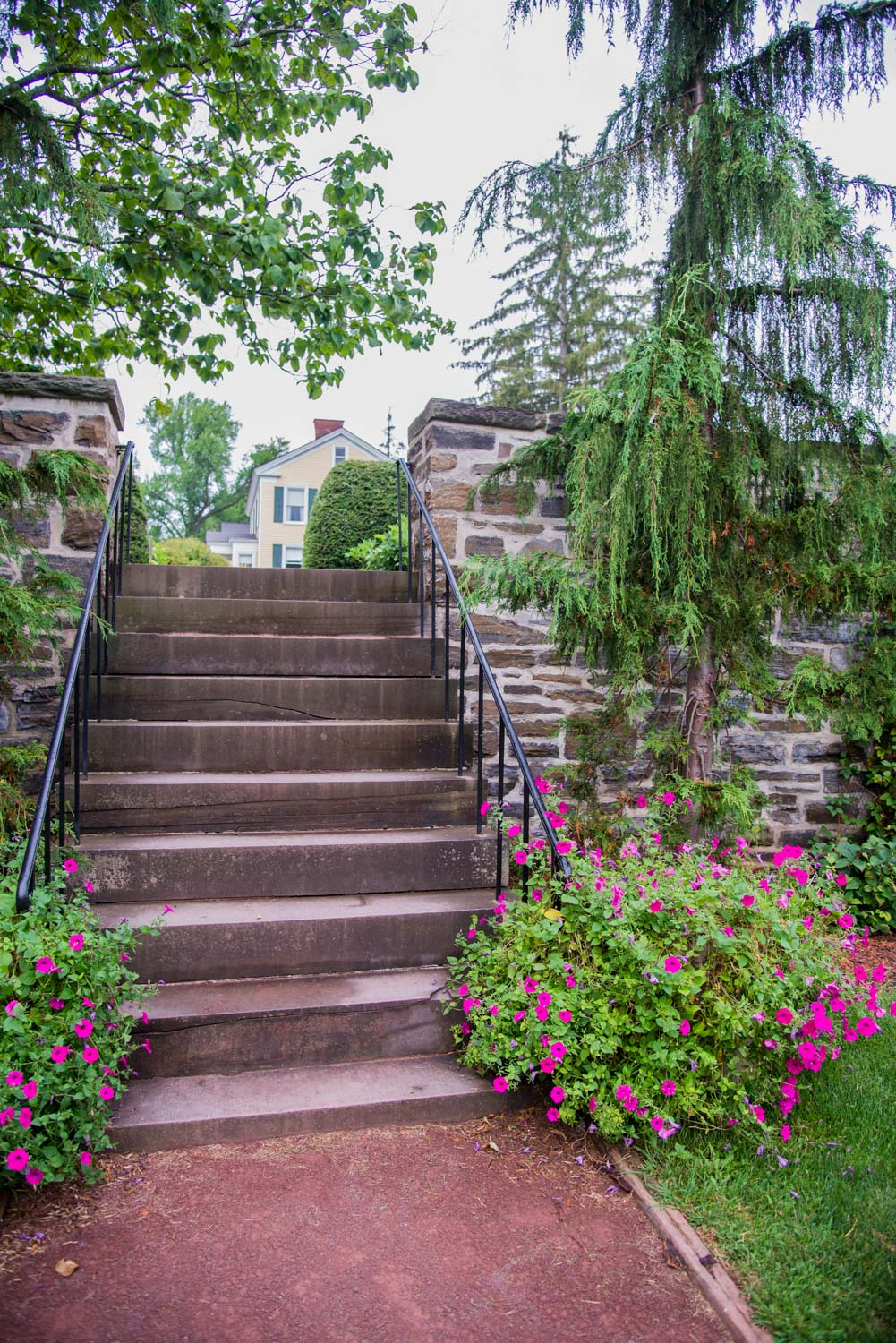 Stone steps with flowers for senior photos