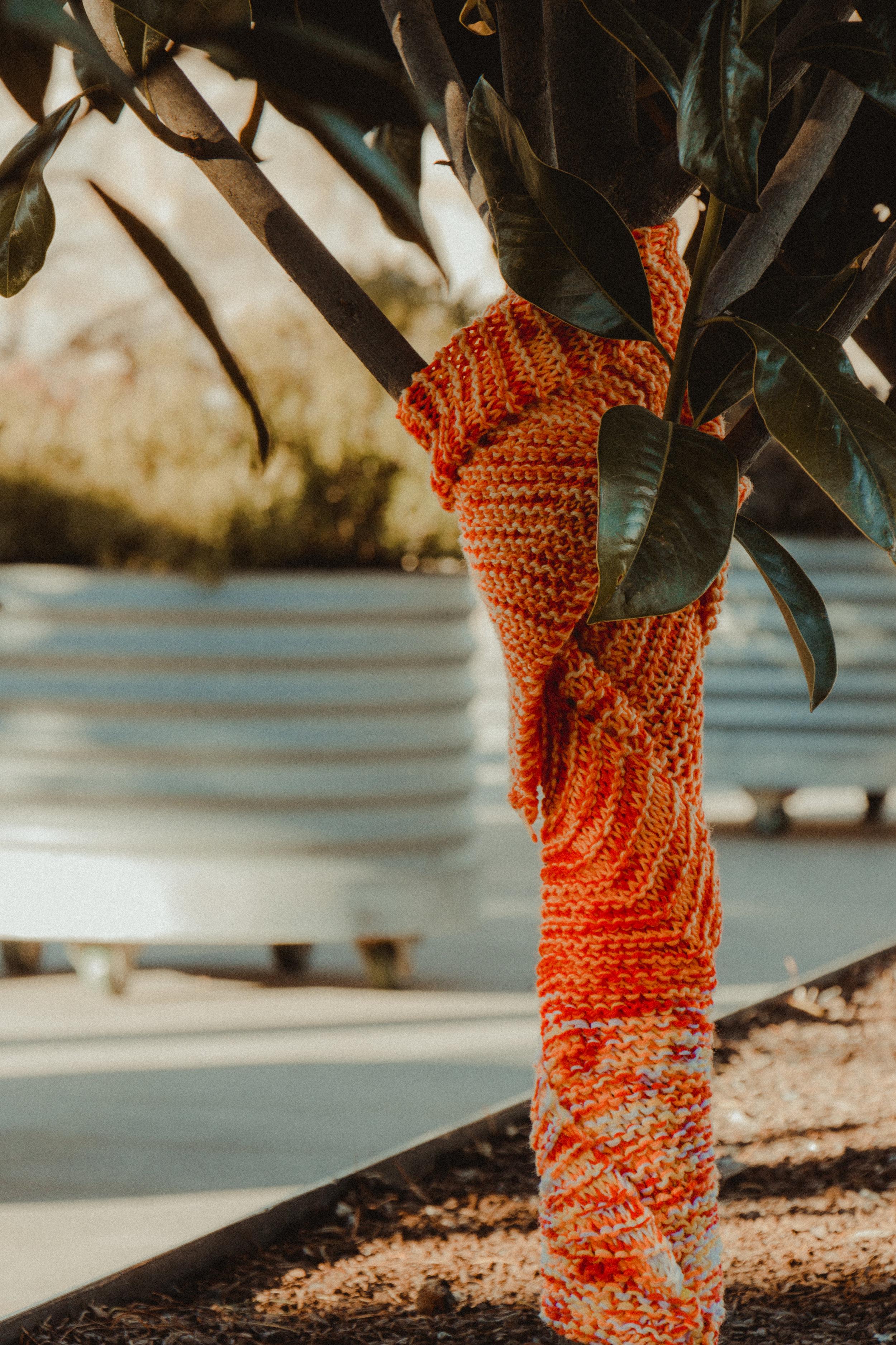 arboretum-11.jpg
