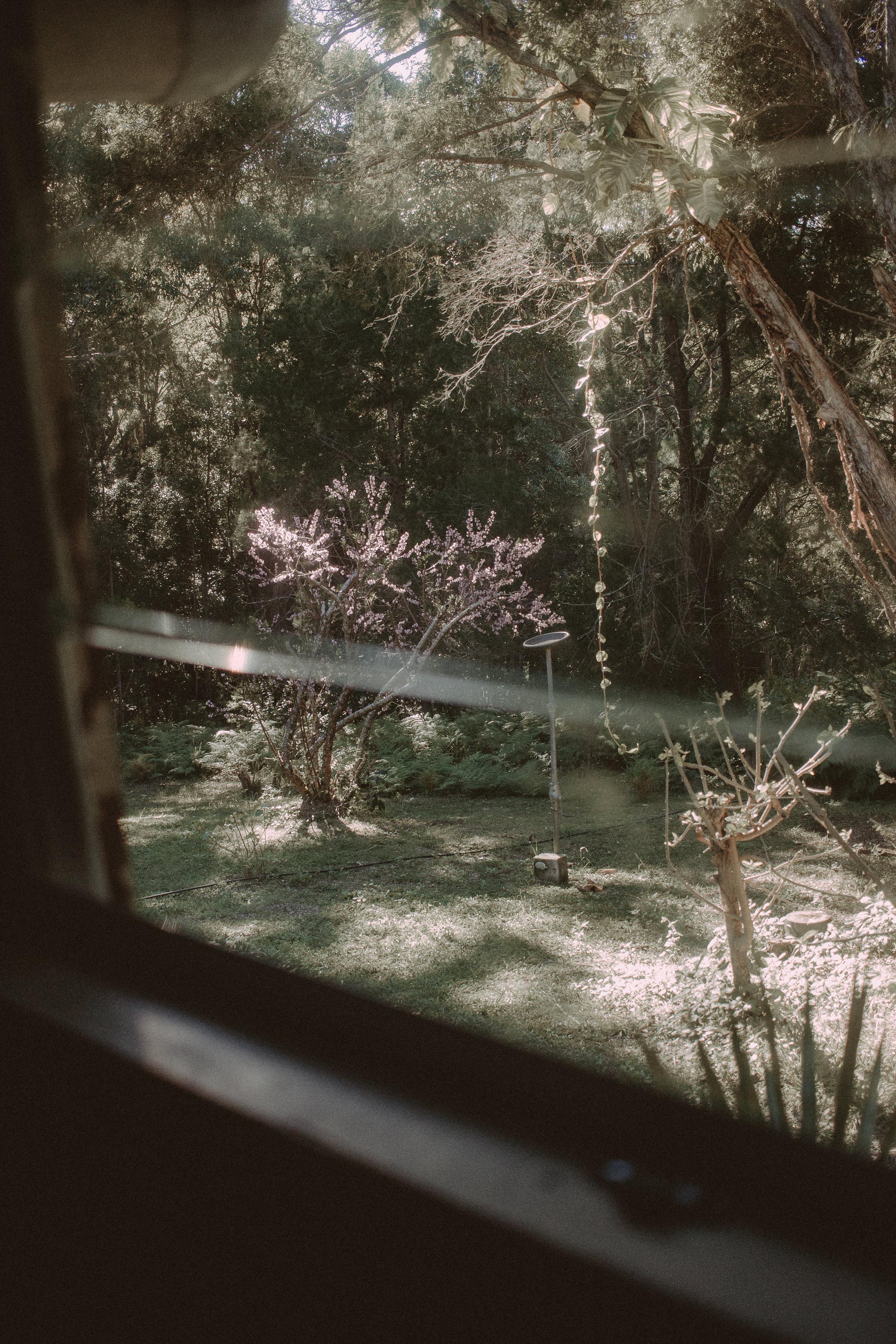 Splendour-48.jpg