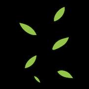 matcha leaves.png