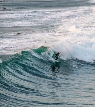 SURFING-2.jpg