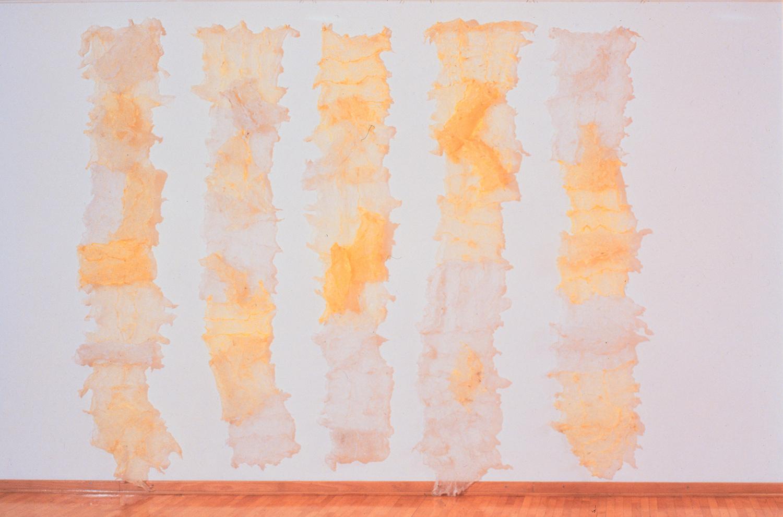Cuts Through Aggressiveness , object (plastic bags. fire), 1999