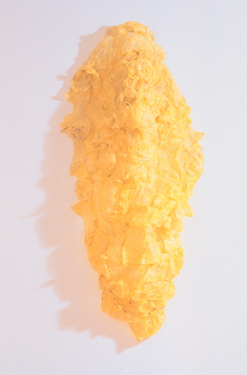 Armor , object (plastic bags. fire), 1999