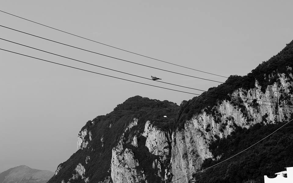 Image of Capri by Alexi Paladino