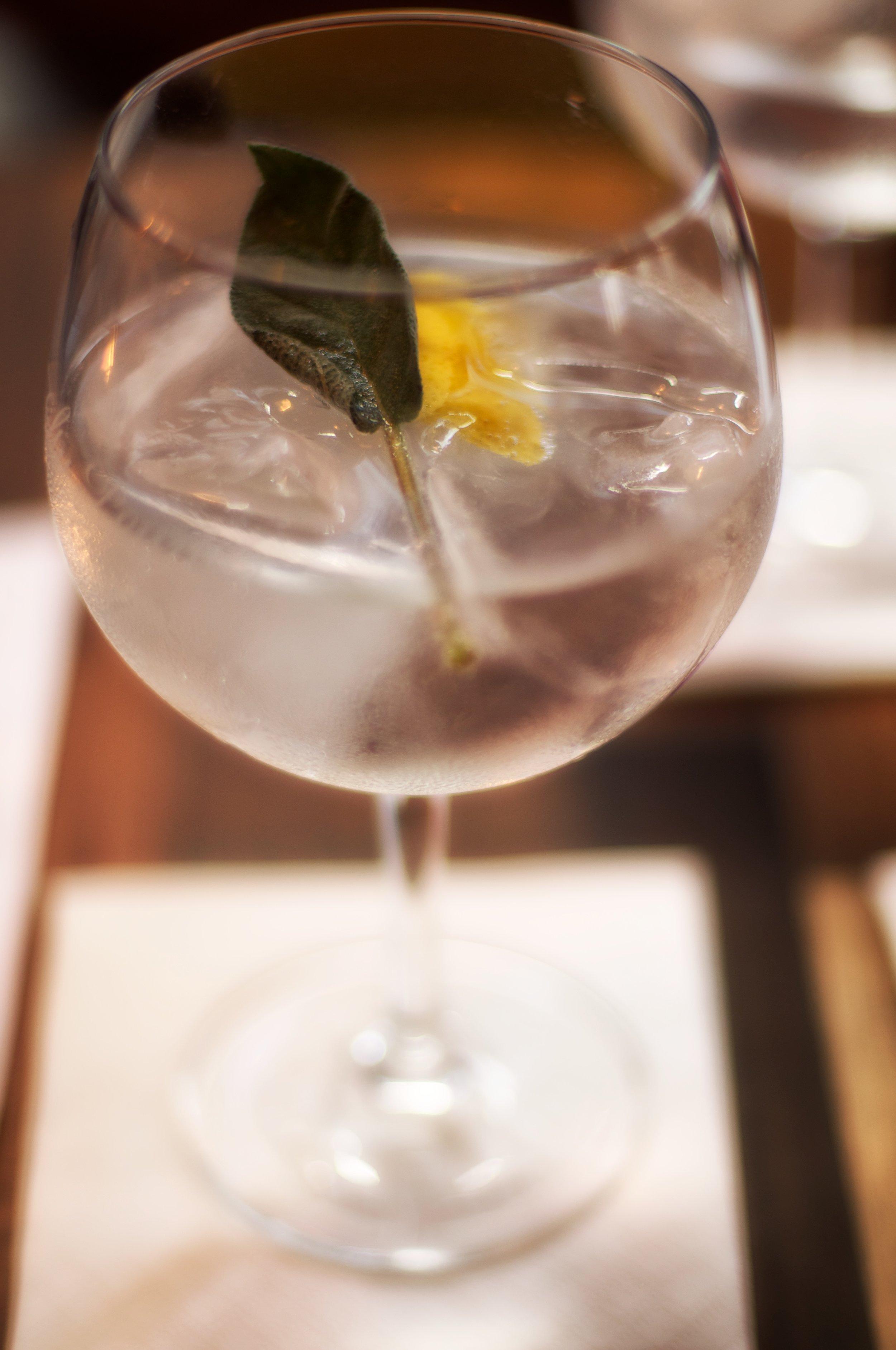 gin-4.jpg