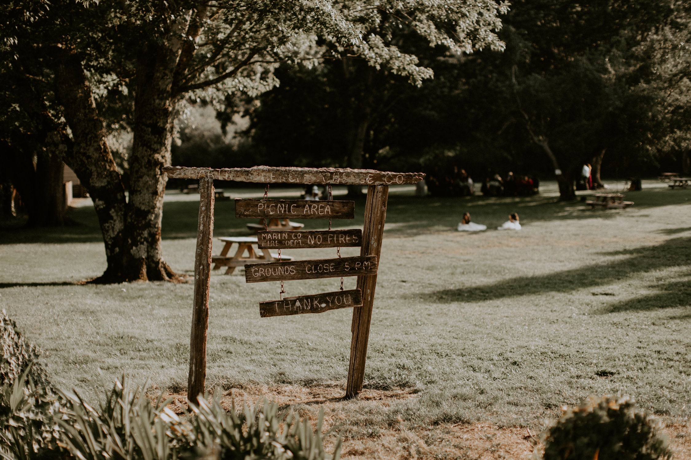 couple-wedding-marin-french-cheese-petaluma-california_0051.jpg