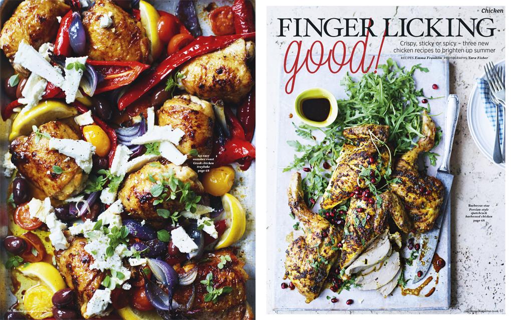 chicken aug 15-1 copy.jpg