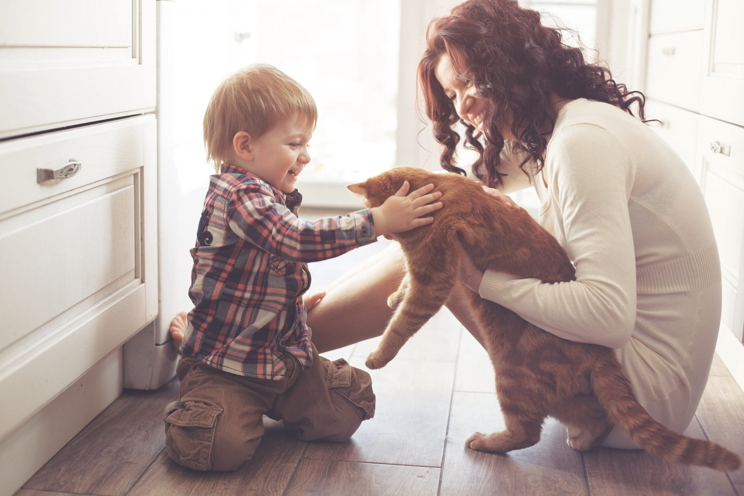 Pest Control Safe Around Children & Pets
