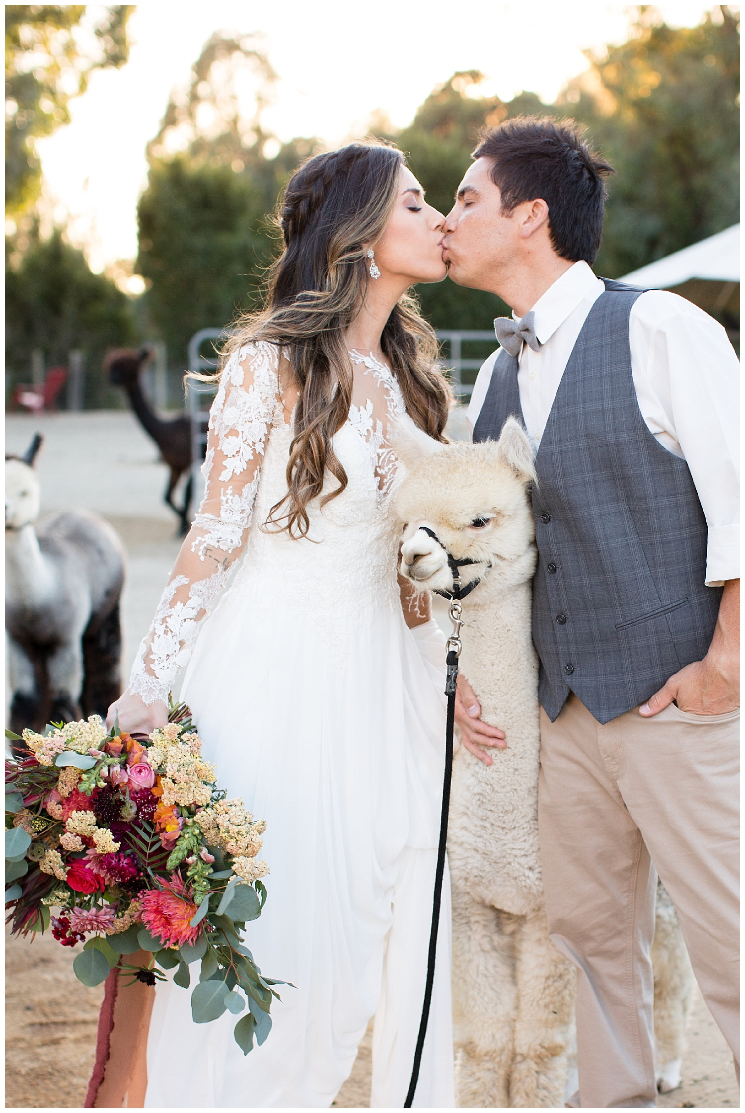 de joy photography alpaca farm wedding