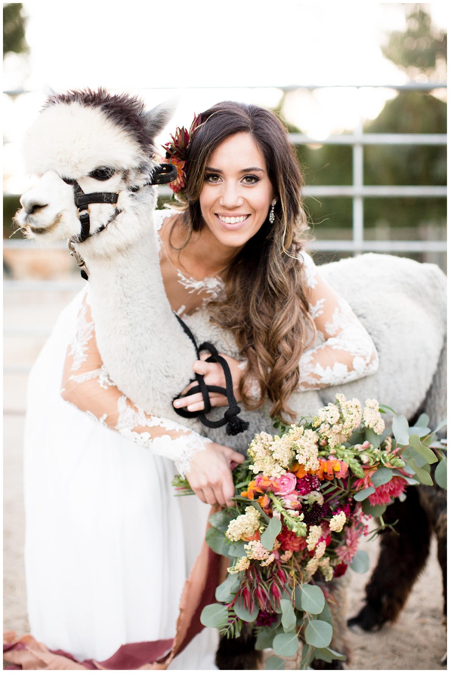 de joy photography bridal alpacas