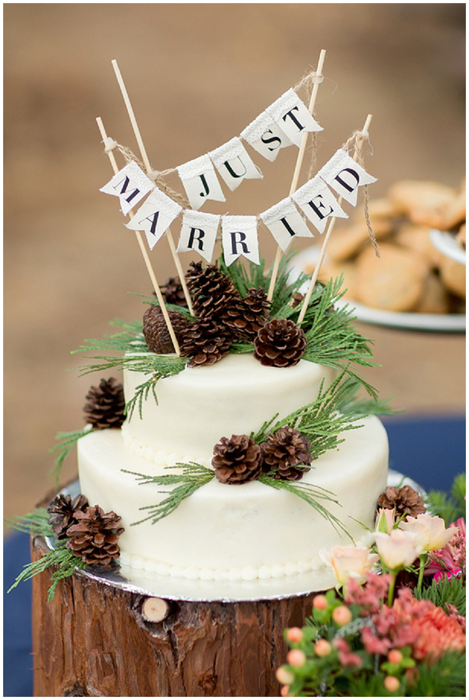 fifth and chestnut wedding photographers Lake Tahoe California
