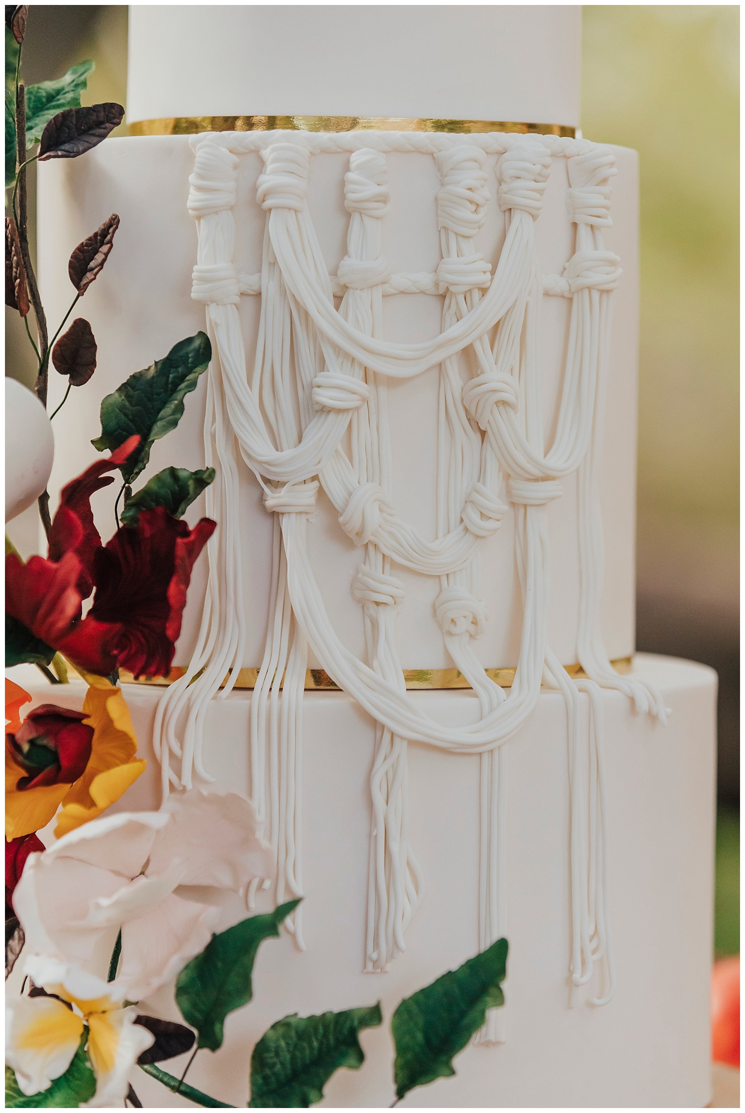 carol oliva photography bay cake design