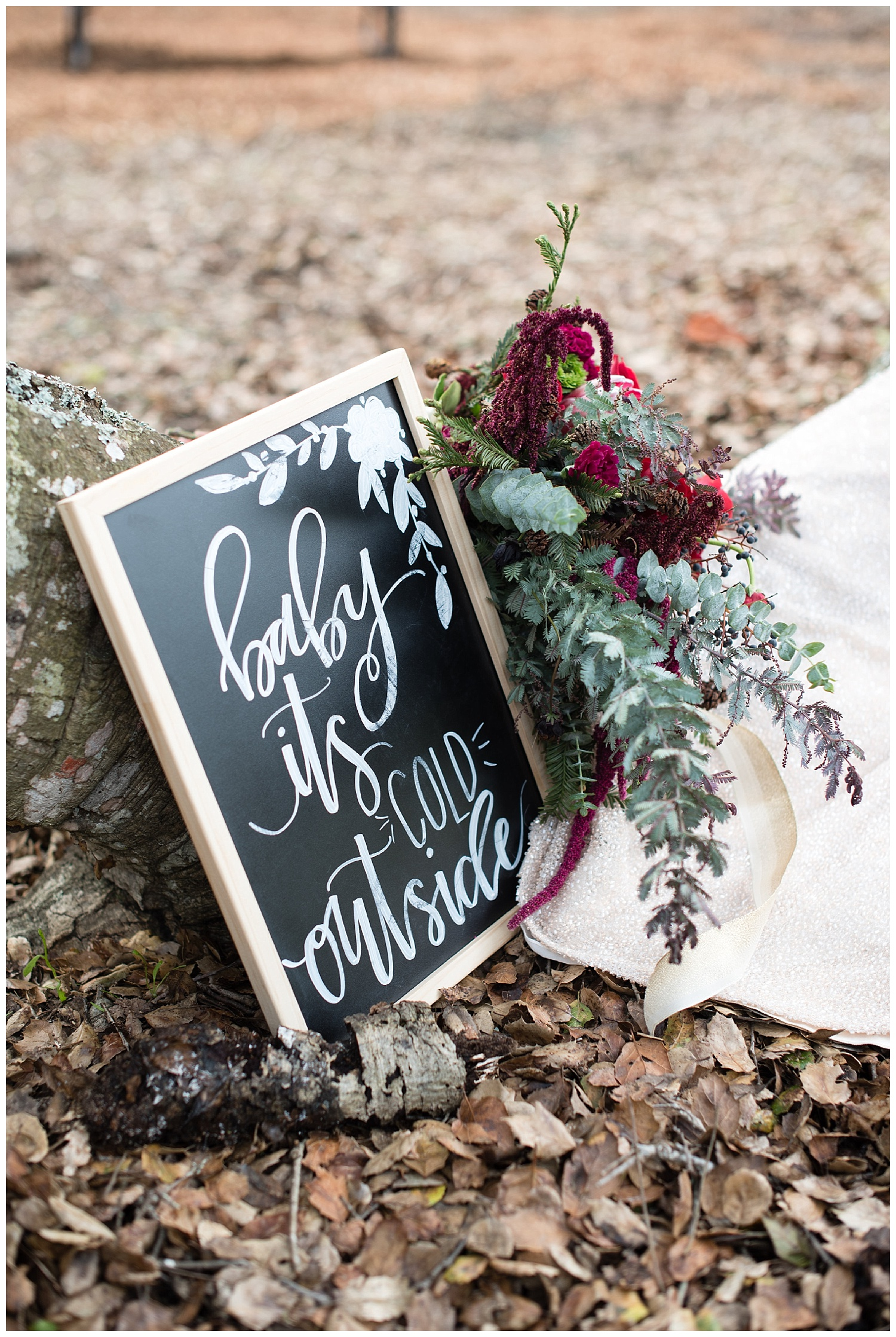baby-its-cold-outside-wedding-sign .jpg
