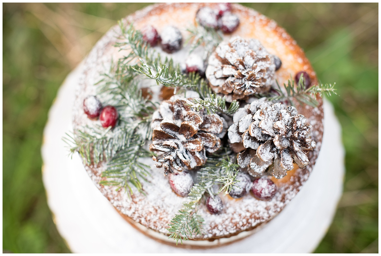 winter-wedding-cake-decorations.jpg