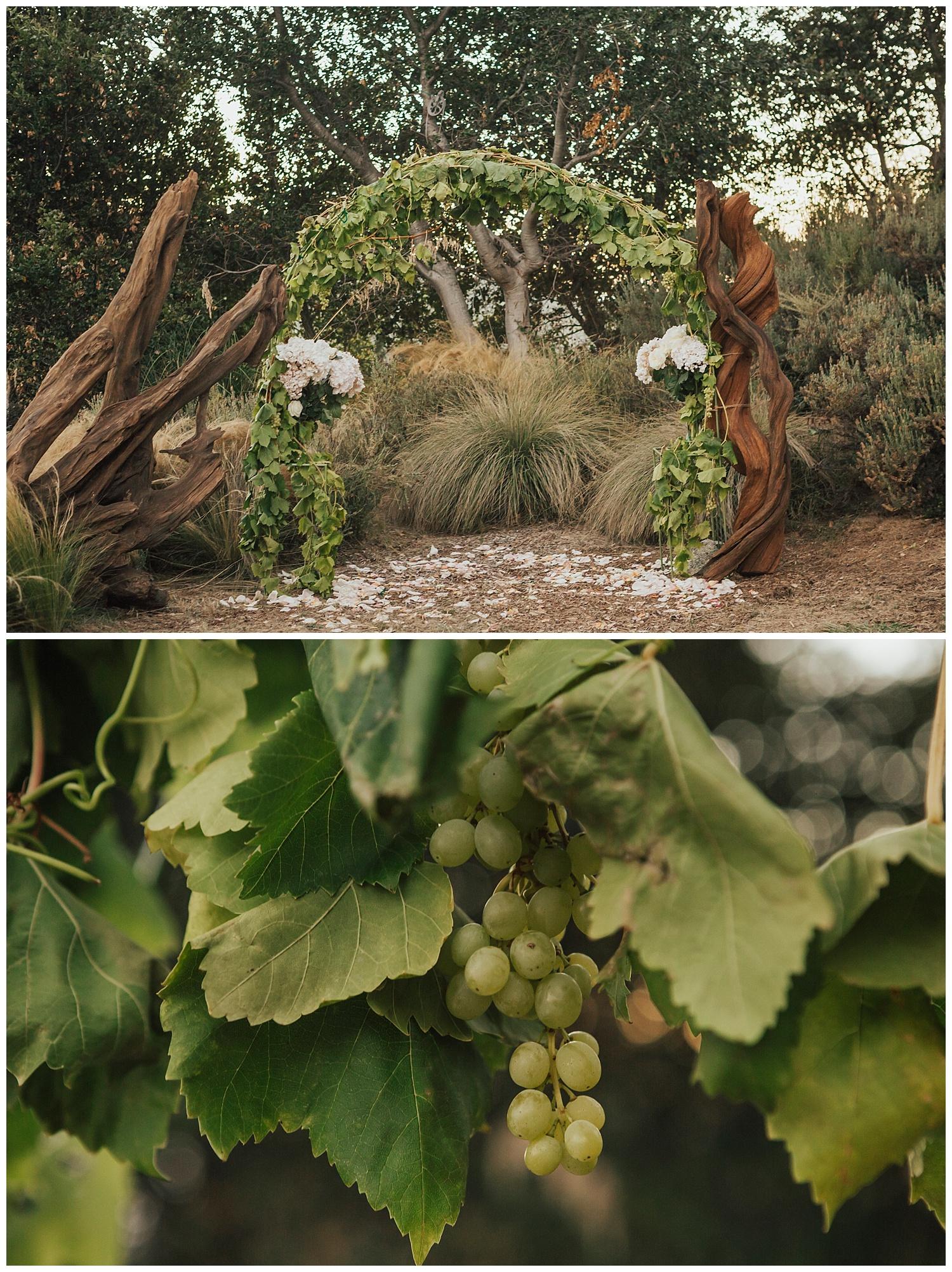 big-sur-summer-wedding-vineyard-details-carol-oliva-photography.jpg